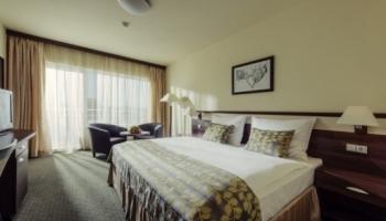 Spa Resort Tree of Life